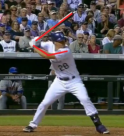 Arenado foot plant annotated